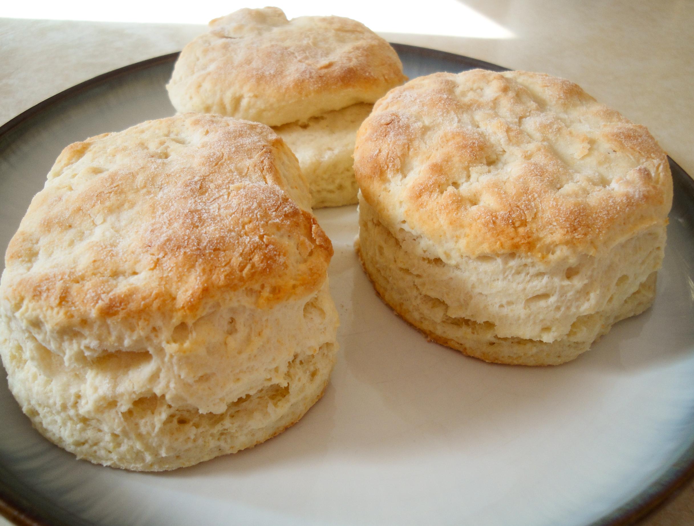 buttermilk biscuits |